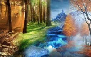Cyclus van de seizoenen