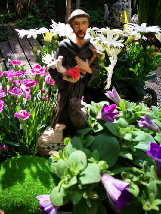 Franciscus van Assisi 30 april 2017
