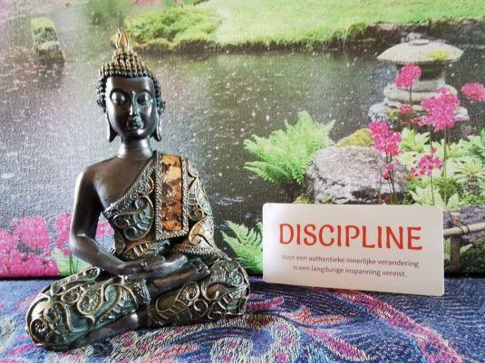 Discipline De wijsheid van het Boeddhisme